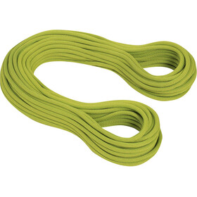 Mammut 9.5 Infinity Dry Rope 50m pappel-limegreen